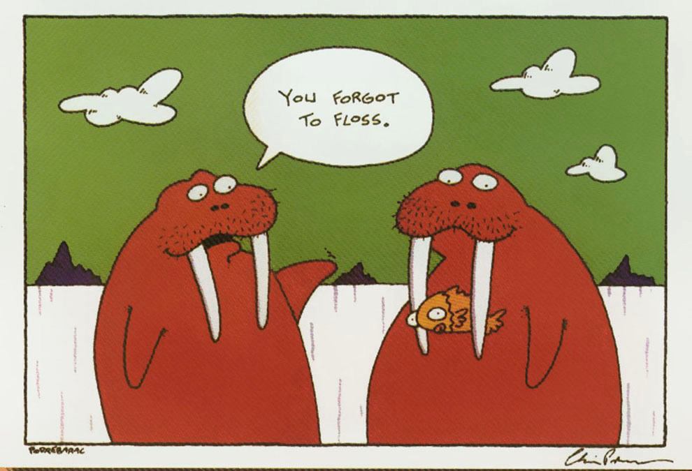 Here are some funny (and some weird) dental tidbits that we think you ...