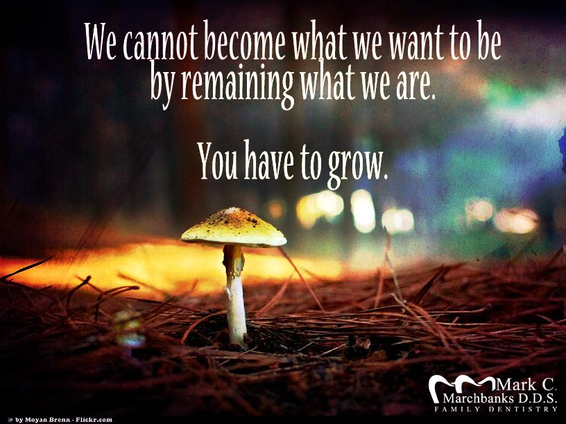 We-cannot-become-what-we-want-to-be-by-remaining-what-we-are-you-have-to-grow