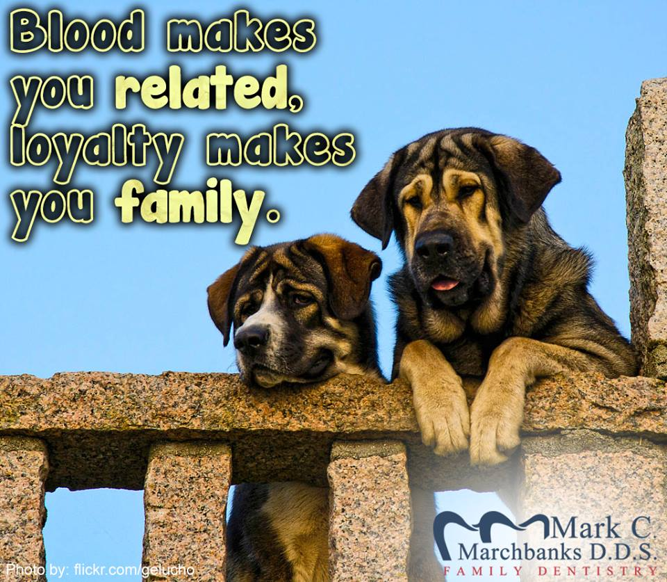 Blood-makes-you-related-loyalty-makes-you-family