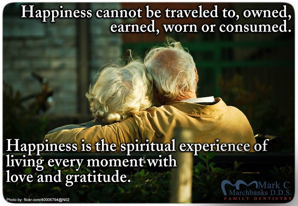 Happiness-cannot-be-traveled-to-owned-earned-worn-or-consumed-happiness-is-the-spiritual-experience-of-living-every-moment-with-love-and-gratitude