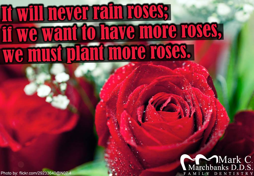I-will-never-rain-roses-if-we-want-to-have-more-roses-we-must-plant-more-roses