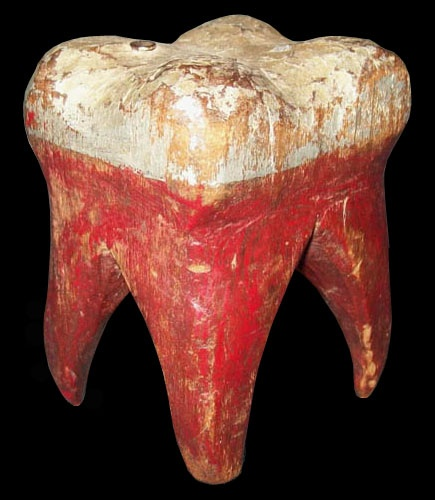 Carved wooden molar painted white on top with red roots.