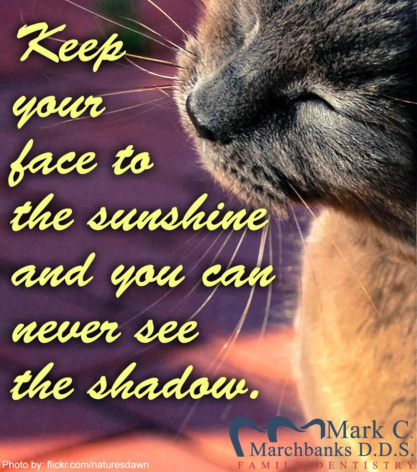 Keep-your-face-to-the-sunshine-and-you-can-never-see-the-shadow
