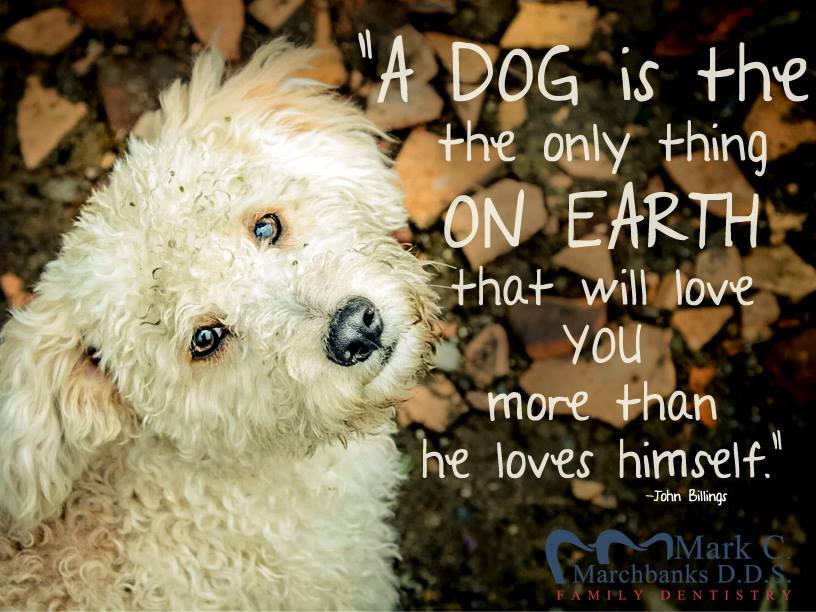 A-dog-is-the-only-thing-on-Earth-that-will-love-you-more-than-he-loves-himself-John-Billings