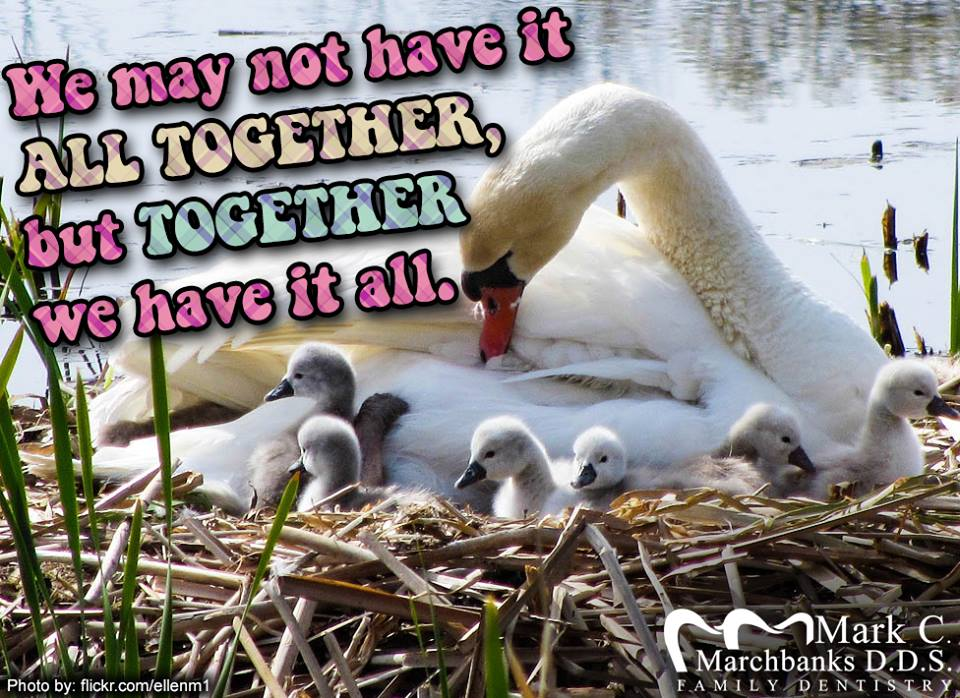 We-may-not-have-it-all-together-but-together-we-have-it-all